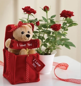 Image of valentine flowers and gifts