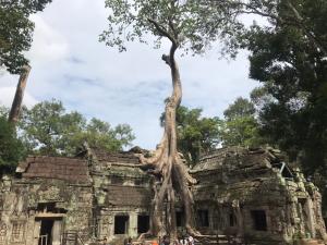 Angkor Tom 2